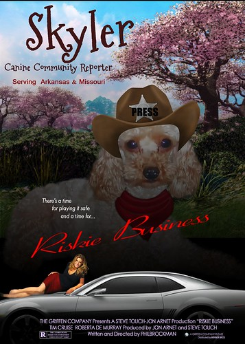 Meet Skyler, Canine Community Reporter by Kathy Tarochione