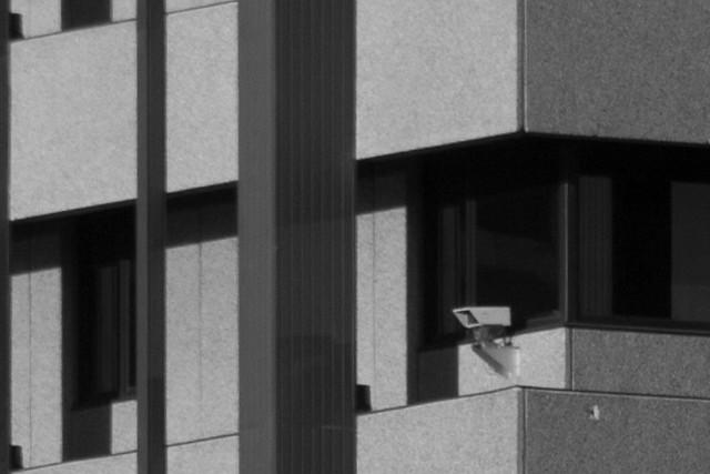 Surveillance #2