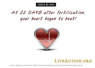 At 22 Days