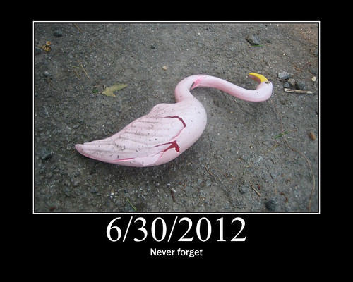 20120630 0657 - storm damage while yardsaleing - flamingo casualty - Never Forget - (by Dave O) - motivatorf2ce6e0b580736f3c6bccdc65d22b293c5e1bca4
