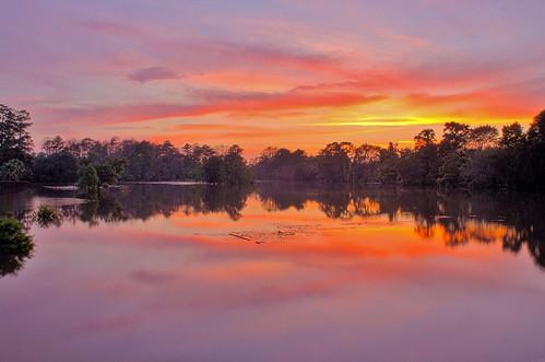 nightphotography trees sunset sky water skyline geotagged pond texas view tx houston parallel houstonflood rainforestink
