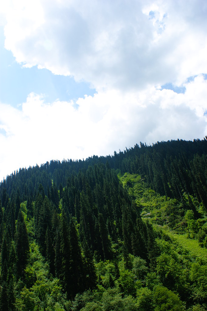 "MJC Summer 2012 Excursion to Neelum Valley with the great ""LIBRA"" and Co - 7608955452 db5f3f0fb5 b"