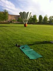 field(0.0), sport venue(0.0), sports(0.0), recreation(0.0), outdoor recreation(0.0), golf club(0.0), golf(0.0), golf course(0.0), meadow(0.0), grass(1.0), tree(1.0), artificial turf(1.0), green(1.0), lawn(1.0), grassland(1.0),