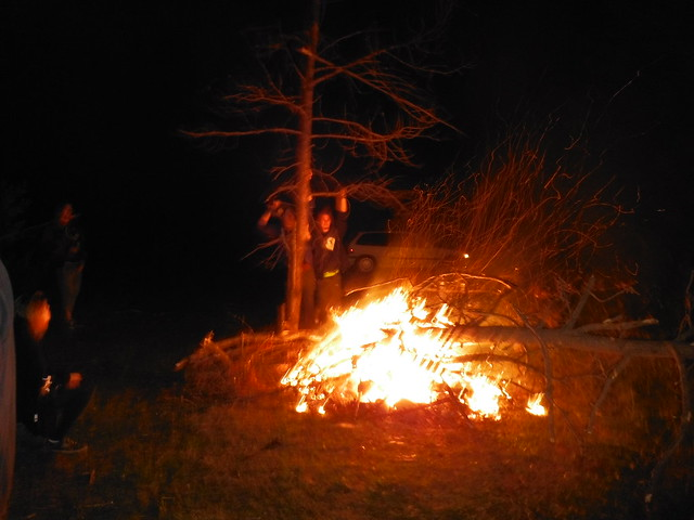 bush party fire