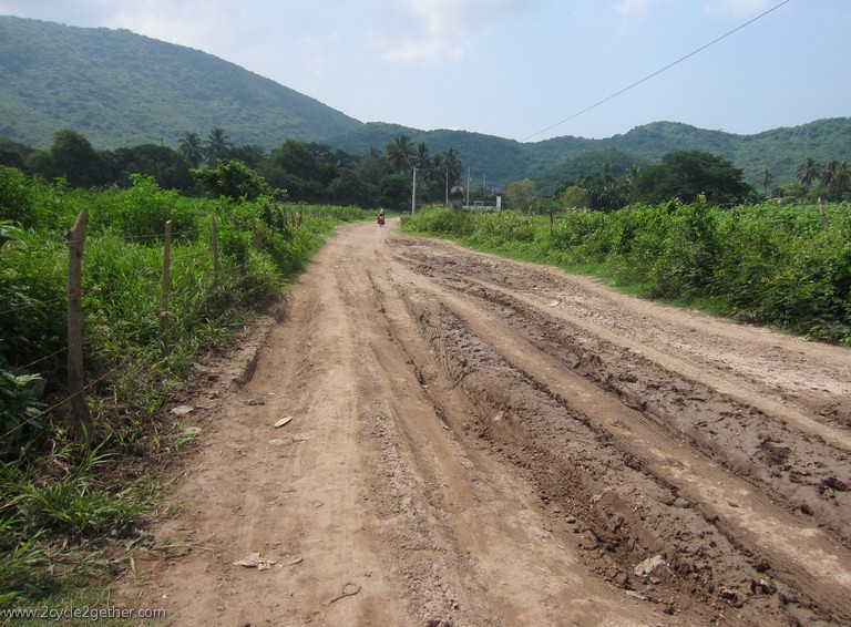 Road leading to Chametla, Sinaloa
