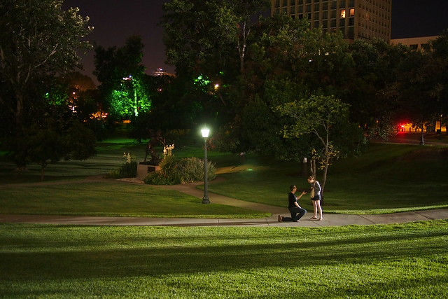 the proposal *unedited*