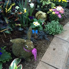 Regina Floral Conservatory 4