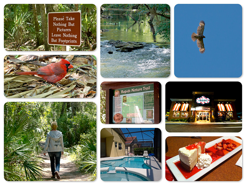 Hillsborough River State Park collage