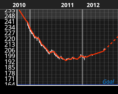A weight loss graph showing a span of 600 days and a weight trend starting at 256 pounds, dropping to 193, then rising again to 207, with a trendline continuing upward