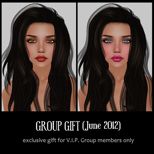 V.I.P. Group Gift June 2012