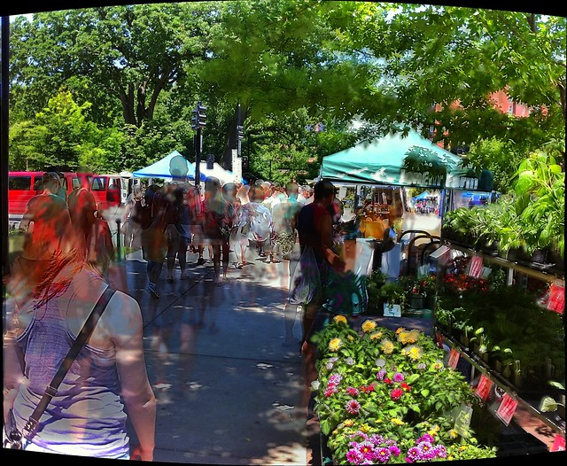 Holding Camera Still and Letting People Move at Dane County Farmers' Market