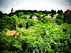 A lot of #green in #Eisenach.