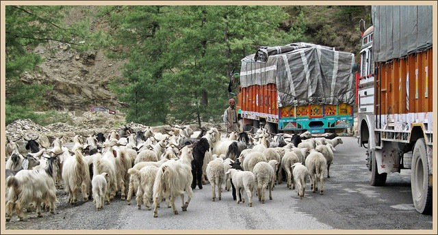 Road Block on NH-22