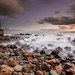Dawn by Nick Twyford