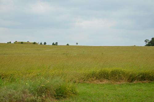 field rural landscape scenic mo missouri fields ozarks historicsite ashgrove statehistoricsite nathanboone