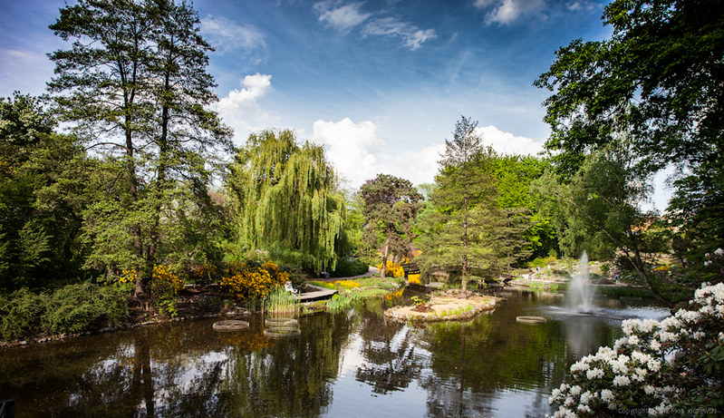 Jardín botánico de Wrocław