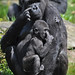 Western Lowland Gorilla & Young by Truus & Zoo