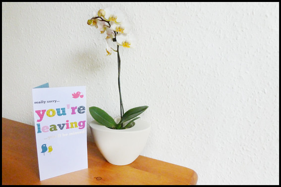 Leaving Card and Orchid