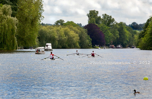 Regatta - Rowing on the River Thames at Marlow, Buckinghamshire, UK