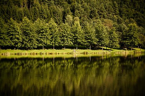 lake reflection forest hungary hársas máriaújfalu