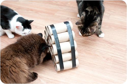crafty cat toys doodlecats. Black Bedroom Furniture Sets. Home Design Ideas