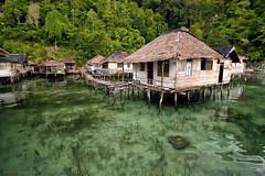 Laut - Halaman Rumah