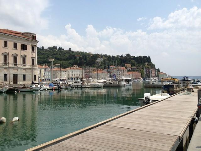 The harbor in Piran