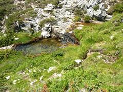 Traversée Frauletu-Giavingiolu : pozzi du ruisseau d'I Pozzi