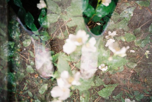Multiple Exposure of Wellies and Flowers