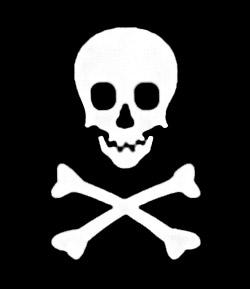 Beware image theft… track down image pirates.
