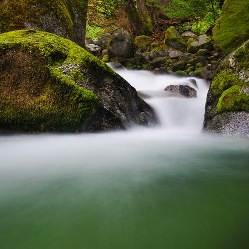 green creek landscape moss cascade whiskeytown brandycreek
