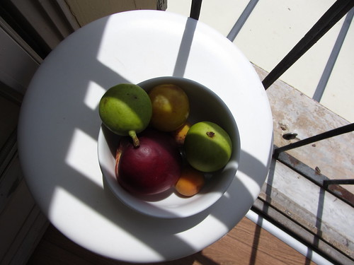 fruit bowl at my window