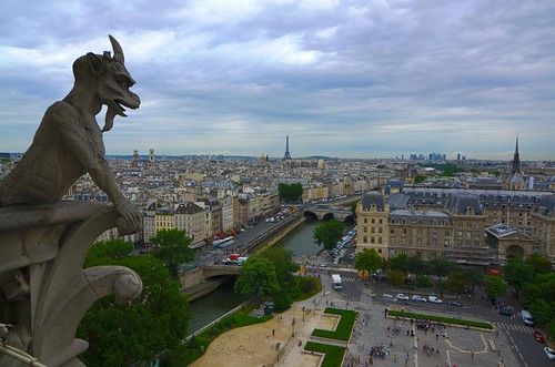 View from the top of the Notre Dame in Paris