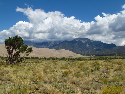 View from Sand Bench Trail: Great Sand Dunes National Park & Preserve, Colorado (CO)