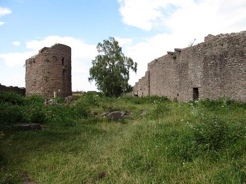 ruine du chateaux frankenbourg 153