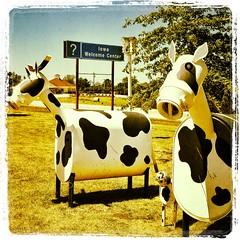 Iowa Trip 2012!