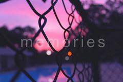 139/365 - Memories.
