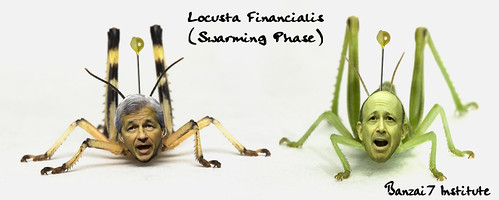 LOCUSTA FINANCIALIS by Colonel Flick