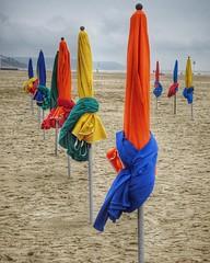 #deauville, septembre 2016 • #new #igersfrance #beach #sea #ocean #parasol - Photo of Pont-l'Évêque