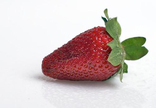 (1686) strawberry