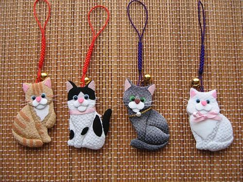 cats кошки