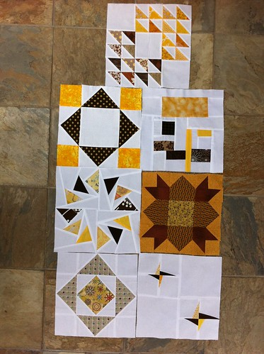 3x6 Bee Blocks Received!! Hive 10 Q1
