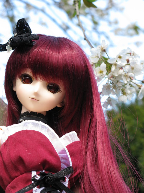 Spring Kaori