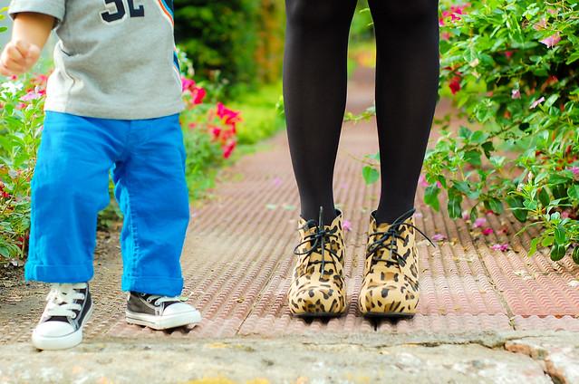 Cheetah and Leopard