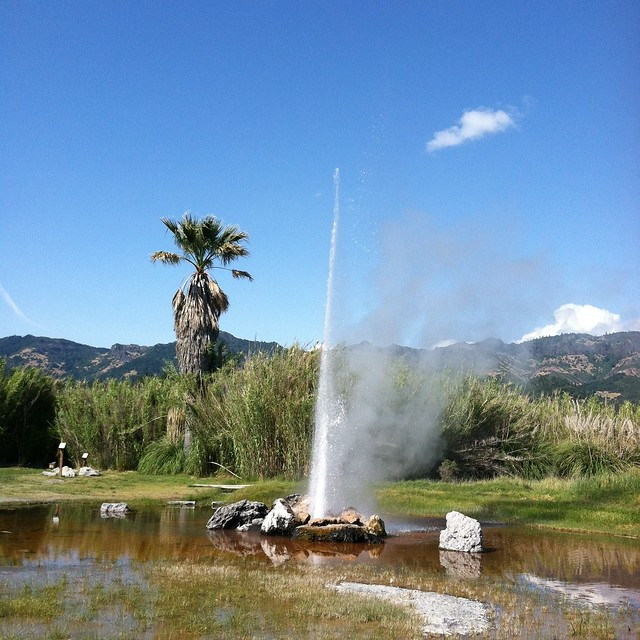 @ Old Faithful Geyser of Calistoga