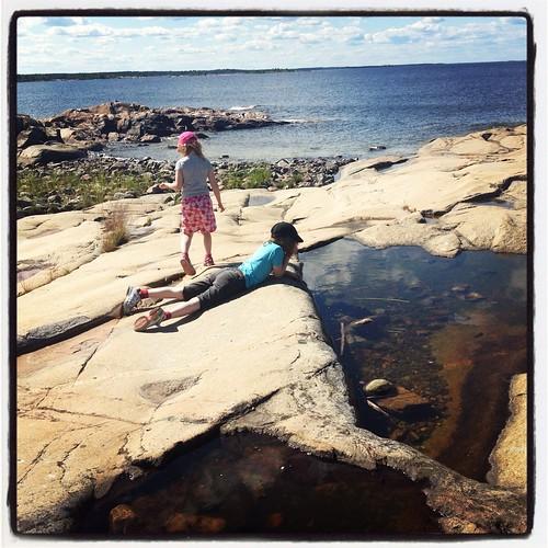 Klara och Viggo tittar på grodyngel