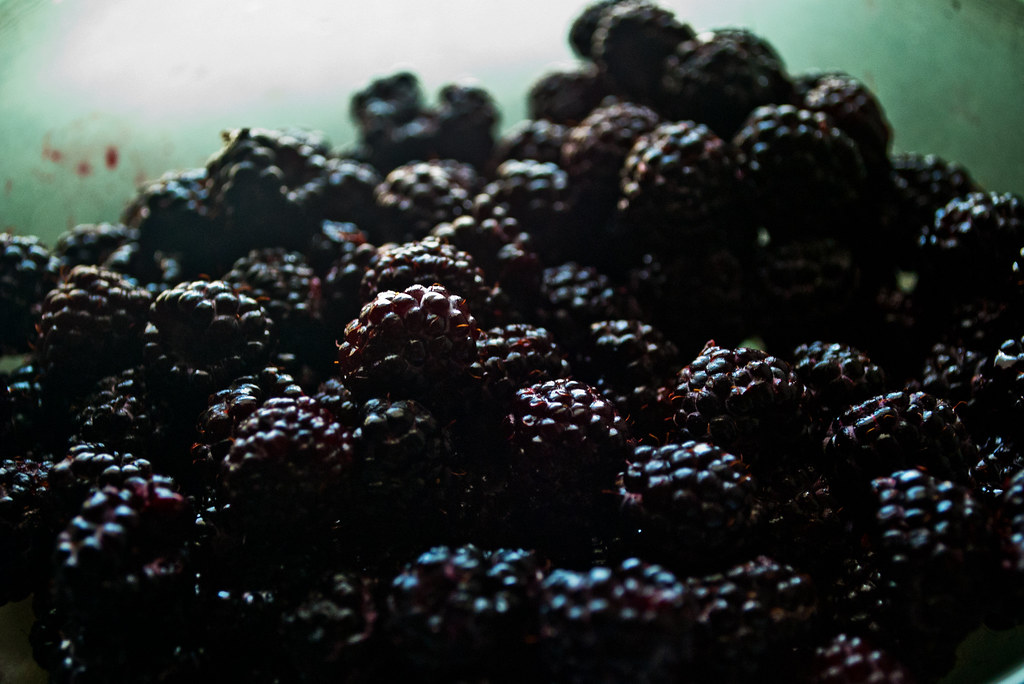 365-362 Blackberries