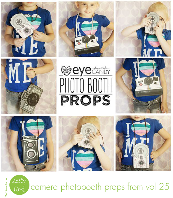 {zesty find} camera photobooth props from vol25