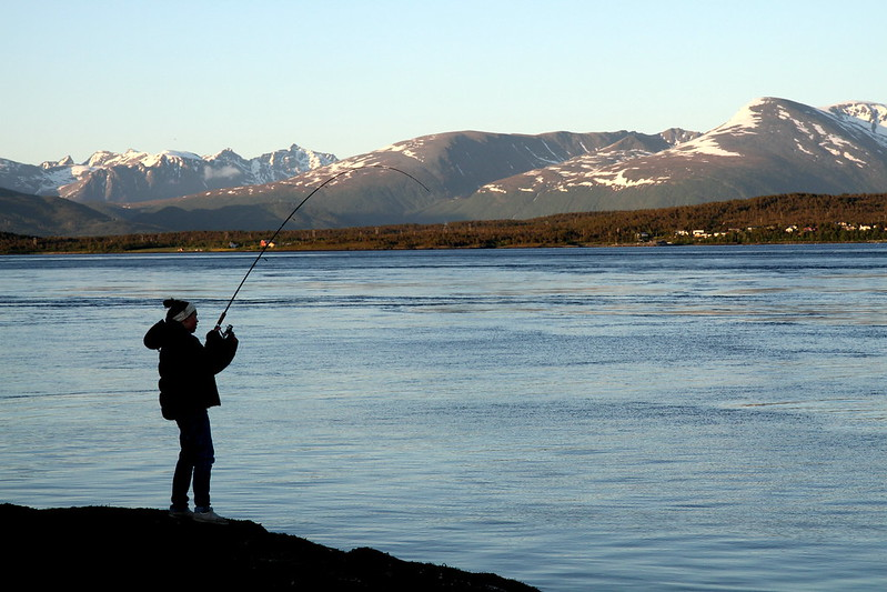 Tromssa 338