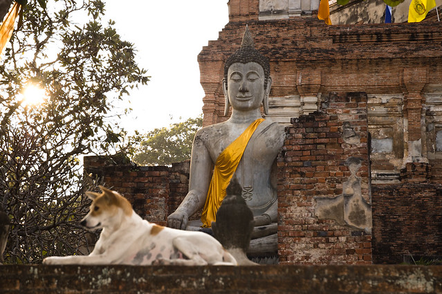 Templo de Wat Yai Chai Mongkol en Ayutthaya